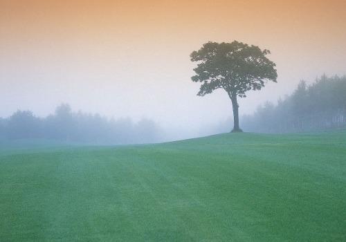 Hanazono golf hole 6 thumbnail