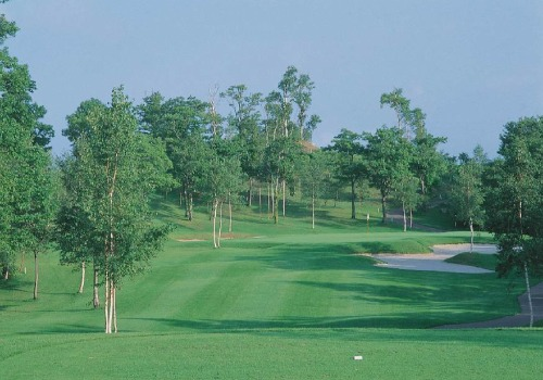 Hanazono golf hole 11 thumbnail