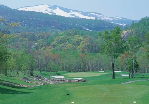 Hanazono golf hole 8 thumbnail
