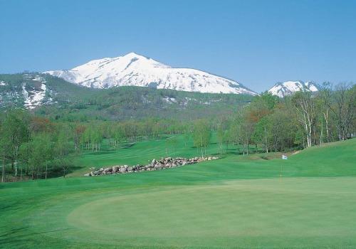 Hanazono golf hole 10 thumbnail