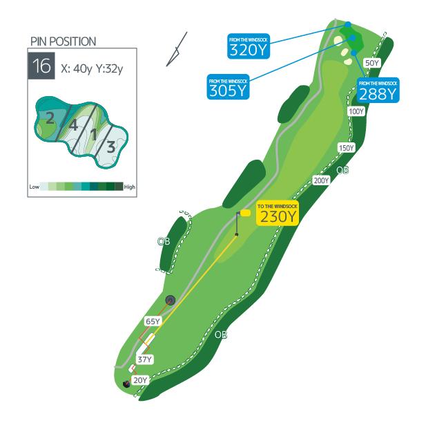 Hanazono golf hole 16 overview image